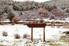Славная снежная пуща сосенки с деревянным плакатом Стоковые Изображения