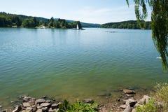 Славный берег озера с травой, деревьями и утесами в воде Стоковое фото RF