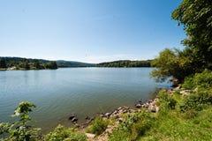 Славный берег озера с травой, деревьями и утесами в воде Стоковое Изображение