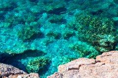 Славный взгляд моря Спокойное ясное море большие камни Адриатическое море Черногория Стоковая Фотография