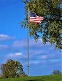 Славный государственный флаг США Стоковое Изображение RF