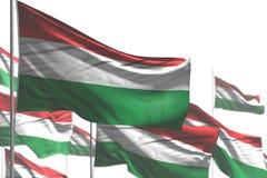 Славный любая иллюстрация флага 3d торжества - много флагов Венгрии волна изолированная на бело- изображении с выборочным фокусом иллюстрация штока