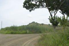 Славный пейзаж в Mahayahay, Hagonoy, Davao del Sur, Филиппинах стоковые фото