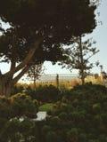 Славный стадион стоковое изображение