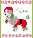Сладкая собака пуделя с костюмом Санта иллюстрация штока