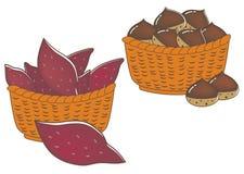 Сладкие картофели и каштаны - еда осени бесплатная иллюстрация