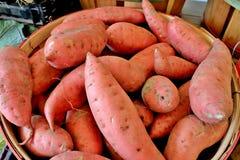 Сладкие картофели Стоковое Изображение RF