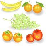 Сладкий сочный плод для каждого вкуса Свежие бананы, хурмы, апельсины, яблоки, виноградины Источник витаминов и прослеживающих эл бесплатная иллюстрация