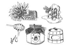 Сладкий monochrome набор собрания меда стоковые фото