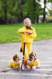 Сладостная девушка в желтом самокате katatsya платья с собаками в парке Стоковые Изображения