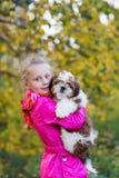 Сладостная девушка держит малое tzu shih щенка Стоковое фото RF