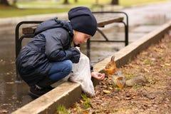 Сладостная девушка подавая белка в парке Стоковое Изображение