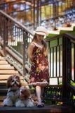 Сладостная красивая девушка 7 лет объятий 2 идентичных собаки Shih Tzu Стоковое Фото