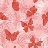 Сладостная тропическая картина заполнени-в воинской зеленой бабочке flting o бесплатная иллюстрация