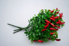 Сладостное kapi красного перца, 3 перца на белом деревянном столе, перце, chile, изолированных чилях, горячий, красный, пряный, ц Стоковое Изображение RF