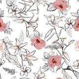 Сладостной линия нарисованная рукой цветки эскиза lilly смешивает с гибискусом и бесплатная иллюстрация