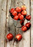 Сладостные вишни Maraschino Стоковые Изображения