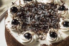 Сладостный домодельный торт черного леса стоковое фото rf