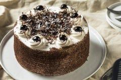 Сладостный домодельный торт черного леса стоковая фотография rf