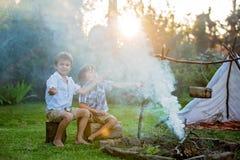 2 сладостных дет, братья мальчика, располагаясь лагерем вне летнего времени дальше Стоковая Фотография RF