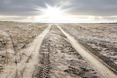 Следы автошины на пляже Стоковая Фотография