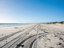 следы автошины песка пляжа Стоковое Изображение