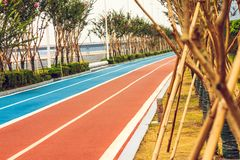 Следы бегунов и велосипедистов Стоковая Фотография RF
