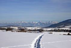 Следы ботинка Snowy Стоковые Изображения