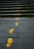 следы дороги Стоковое фото RF