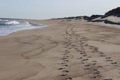 Следы ноги вышли в песок на песочном прибрежном пляже океана Стоковое Изображение