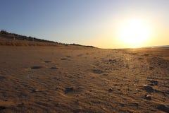 Следы ноги вышли в песок на песочном прибрежном пляже океана Стоковая Фотография RF