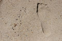 Следы ноги вышли в песок на песочном прибрежном пляже океана Стоковые Фотографии RF
