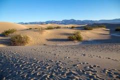 Следы ноги в песке водя вне к песчанным дюнам Mesquite плоским стоковые фото