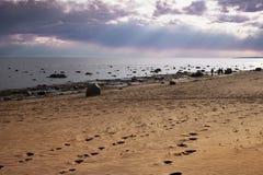 Следы ноги в песке идя к морю стоковое фото