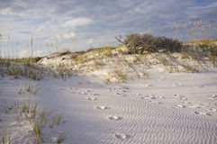 Следы ноги в песчанных дюнах на заходе солнца Стоковые Фото
