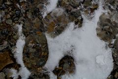 Следы ноги в снеге вдоль высокогорного следа каньона утеса/Provo, Юты стоковое фото rf