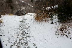 Следы ноги в снеге вдоль высокогорного следа каньона утеса/Provo, Юты стоковое изображение