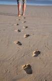 следы ноги зашкурят влажную Стоковая Фотография