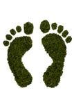 следы ноги зеленеют изолированную белизну Стоковые Изображения