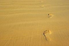 Следы ноги на песке Стоковые Изображения
