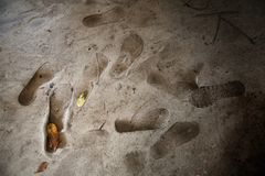 Следы ноги на поле цемента стоковое фото rf