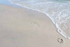 следы ноги пляжа Стоковые Фотографии RF