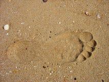 следы ноги Стоковое Изображение