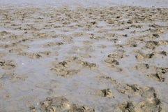 следы песка Стоковая Фотография RF