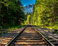 Следы поезда в ДО РОЖДЕСТВА ХРИСТОВА лесе и горах стоковое изображение rf