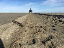 Следы Sandy стоковое изображение