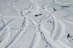 следы snowboard лыжи Стоковое Изображение RF