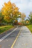 След велосипеда в парке осени. Стоковая Фотография RF
