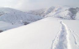 След в снеге в горах Стоковые Изображения