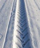 След в снеге Стоковые Изображения RF